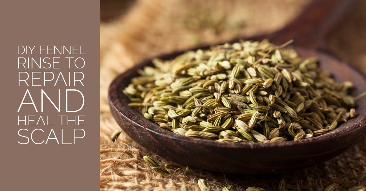 Fennel is healthy for your scalp
